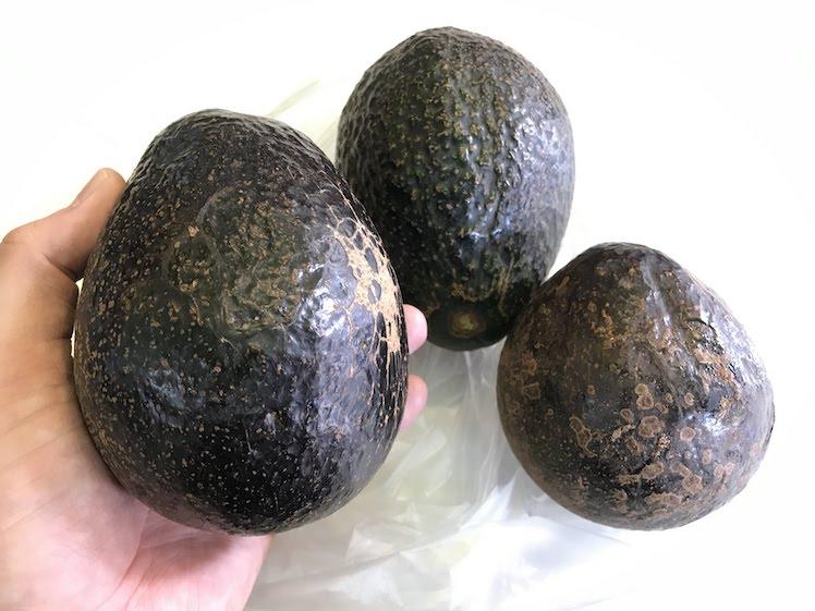 avocado chiangrai