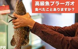 高級魚プラーガオを食べたらプラーガポンでは満足できなくなった話。